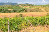 Hungary Countryside