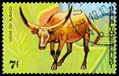 Vintage  Postage Stamp. Animals Burundi, Vache Du  Burundi