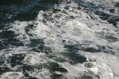 White Froth Foam On Sea Water