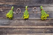 Medical St. Johns Wort Flowers Bunch And Two Rusty Horseshoe On Wall