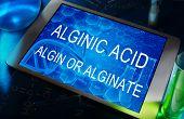 the words Alginic acid or algin