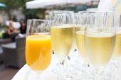 image of waiter  - Waiter holding tray of champagne outside - JPG