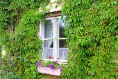Window of a countryhouse