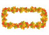 Autumn Maple Leaves Banner