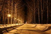 Lights illuminate the road in the village