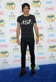 LOS ANGELES - AUG 10:  Ian Somerhalder arrives to the Teen Choice Awards 2014  on August 10, 2014 in Los Angeles, CA.