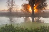 Morning Landscape With Fog Over The River And The Sun.
