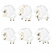 Cute Chibi Sheep