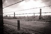 image of hitler  - Ruins of Concentration Camp Auschwitz Birkenau  - JPG