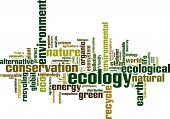 Ecology Word Cloud