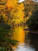 River Bends In Autumn