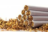 pic of tobacco leaf  - cigarettes in loose tobacco close up with copy space in the white background - JPG