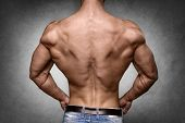 picture of lats  - Back of a young man with well trained body triceps lats and rhomboid muscle and wearing denim trousers - JPG