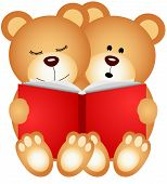 picture of teddy  - Scalable vectorial image representing a teddy bears reading a book isolated on white - JPG