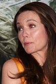 LOS ANGELES - MAR 23:  Diane Lane arrives at the