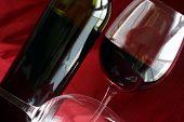 Wine Life