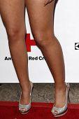 LOS ANGELES - 9 de abril: Estrella Nouri llegar a 2011 American Cruz Roja Santa Mónica del capítulo