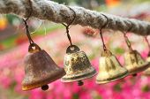 Ethnic Bells