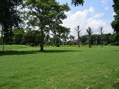 Old_Fort_Lawns