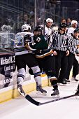 PHOENIX, AZ - DECEMBER 18: Utah Grizzlies wing Scott Thauwald (#24) checks Phoenix Roadrunners wing