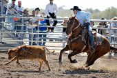 APACHE JUNCTION, AZ - FEBRUARY 28: A competitor ropes a calf at the Lost Dutchman Days Rodeo on February 28, 2009 in Apache Junction, AZ.