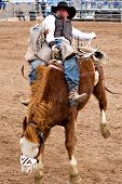 APACHE JUNCTION, AZ - FEBRUARY 27: A cowboy rides a bucking horse in the bareback competition at the Lost Dutchman Days Rodeo on February 27, 2010 in Apache Junction, Arizona.