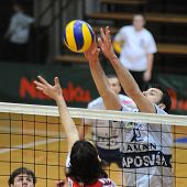 KAPOSVAR, HUNGARY - JANUARY 22: Vojislav Skoric (R) blocks the ball at a Middle European League volleyball game Kaposvar (HUN) vs. HotVolleys Wien (AUT), January 22, 2010 in Kaposvar, Hungary.