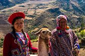 Native Peruvian group with their Llama in Sacred Valley, Cusco, Peru poster