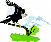 Condor On Branch With Mountains