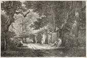 Gros-Fouteau old view, Fointainebleau forest, France. Created by Desjobert, published on Le Tour du Monde, Paris, 1867