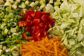 Close-up of 5 fresh vegetables
