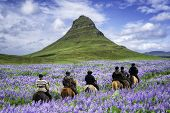 Tourist Ride Horse At Kirkjufell Mountain Landscape And Waterfall In Iceland Summer. Kirjufell Is Th poster