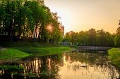 Spring Evening Park. Park At Sunset. Evening Sun Russian Park. Park In The Green. Urban Park. Evenin poster
