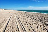 Car Track On White Sand Beach