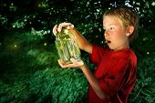 stock photo of lightning bugs  - Boy with a jar of fireflies - JPG