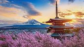 Beautiful Landmark Of Fuji Mountain And Chureito Pagoda With Cherry Blossoms At Sunset, Japan. Sprin poster