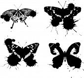 illustration with four butterflies on white background