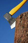 picture of disafforestation  - heavy ax put in stump against blue sky - JPG