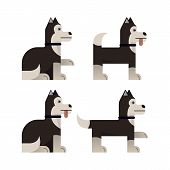 Set Of Flat Icons With Husky. Pedigree Dog. Sitting And Standing. Vector Illustration. poster