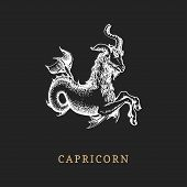 Capricorn Zodiac Symbol, Hand Drawn In Engraving Style. Vector Graphic Retro Illustration Of Astrolo poster