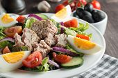 Fresh Caesar Tuna Salad With Delicious Tuna Fish, Ruccola, Spinach, Cabbage, Arugula, Egg, Parmesan  poster