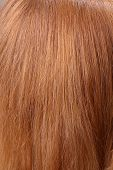 light chestnut hair