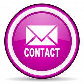 Kontakt violett glänzend Symbol auf weißem Hintergrund