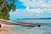 Coast Of Remote Tropical Island