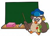 Owl_Teacher_With_Book