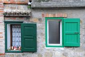 Two Windows With Green Shutters