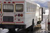 stock photo of high-octane  - white school bus  - JPG