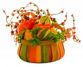 Fall Harvest ~ Pumpkins & Squash In Basket With Fall Berries ~ Includes Clipping Path