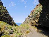 Valley On La Palma