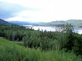 Forest and lake scenic